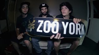 Chaz Ortiz in Chicago: THE ZOO YORK POST