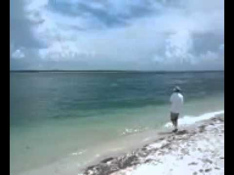 Boca Grande florida shore fishing