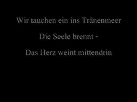 Eisblume - Stern