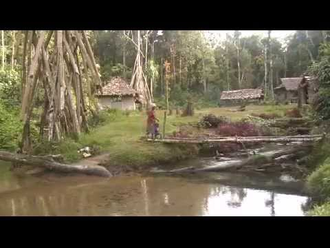 Kokoda Testimony - Papua New Guinea
