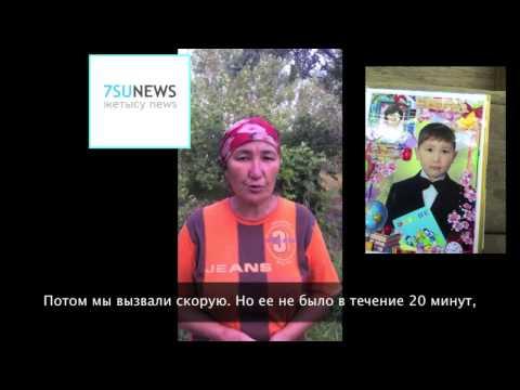6-летний ребенок умер после укуса каракурта в Алматинской области