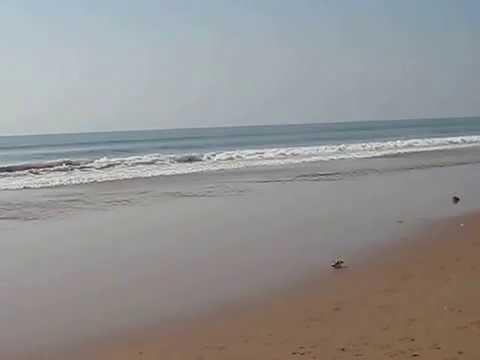 Easiest travelling sea-beach destination - Puri , Orissa