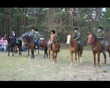 Konie na nieboskłonie