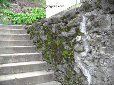 Moss Growing On Rock Retaining Wall Building Maintenance