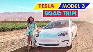 TESLA MODEL 3 ROAD TRIP! Los Angeles to Oakland