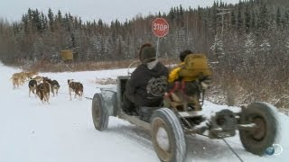 VW Bug / Dog Sled | Yukon Men