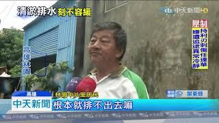 20190720中天新聞 林園黑狗今年免躲水 安穩躺乾爽地板休息