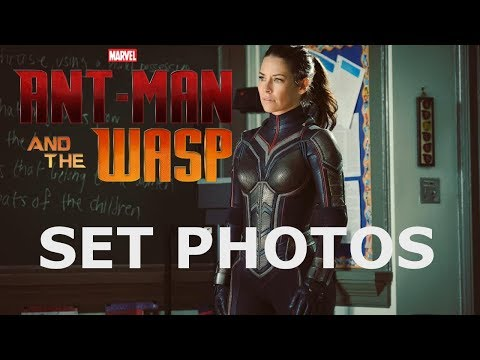 Evangeline Lilly In Full Wasp Costume Set Photos