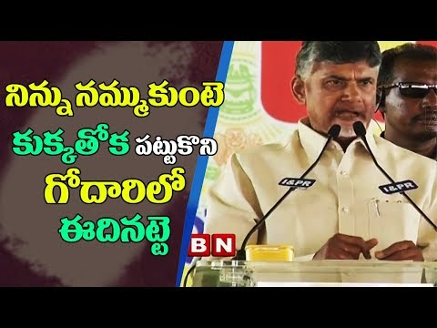 CM Chandrababu Naidu lashes YS Jagan and Pawan Kalyan