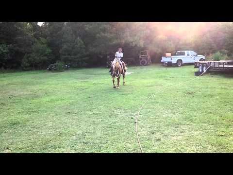 Me riding horse jockey style (literally a jockey)