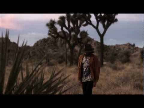 Angus Stone - Bird On The Buffalo