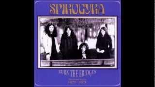 Watch Spirogyra Bring Me Back video