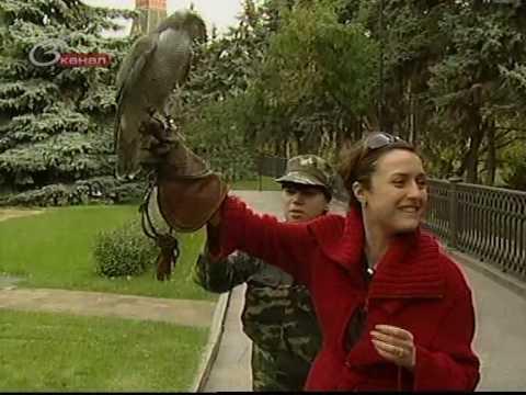 Борьба с воронами