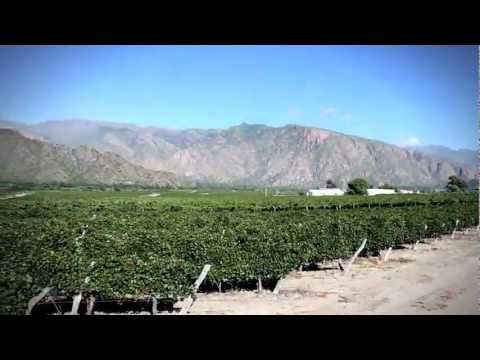 Raw Travel Promo 108 - Road Trip To Salta, Argentina