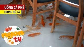Cà phê trong hồ cá đông nghịt khách ở Sài Gòn mùa giải nhiệt