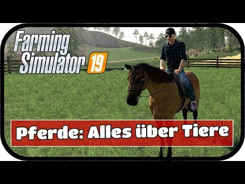 LS19 TIERE - Alles zu den Tieren und deren Versorgung - Neues Tier Pferd!