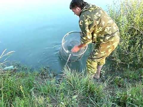 рыбалка старого оскола видео