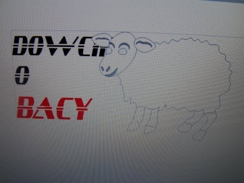 Kawaly I Dowcipy O Bacy.cz.2.