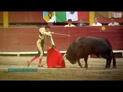 Торреро, Испания - Самые известные матадоры и мировой рекорд