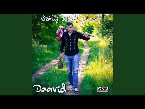 Daavid - Szallj, Szallj (Radio Edit)