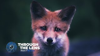 Through The Lens | S04E01 - @kpunkka