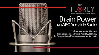 Diet, stress, environment: Epigenetics with Professor Tony Hannan on Brain Power, ABC Adelaide Radio