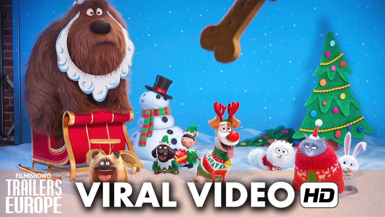 Comme Des Bêtes Viral Video 'Joyeux Noël' (2016) HD