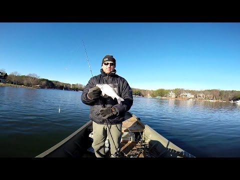 Deep Water Jigging for White Perch & Stripers, Lake Norman 2013 Video