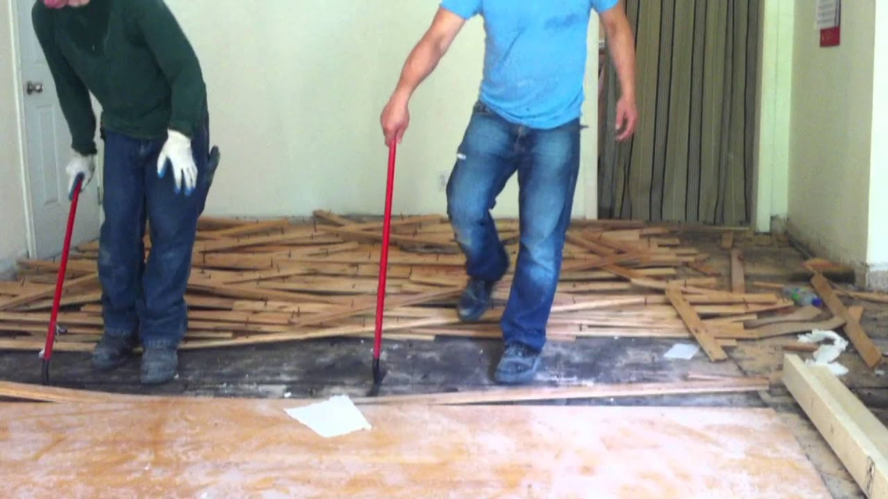 How To Remove Hardwood Floors Nail Down Youtube