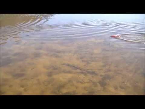 DH 7009 RC Boat Review and Lake Run