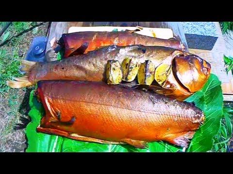 Рыба, Толстолоб, горячего копчения,толстолоб, лосось, советы для начинающих