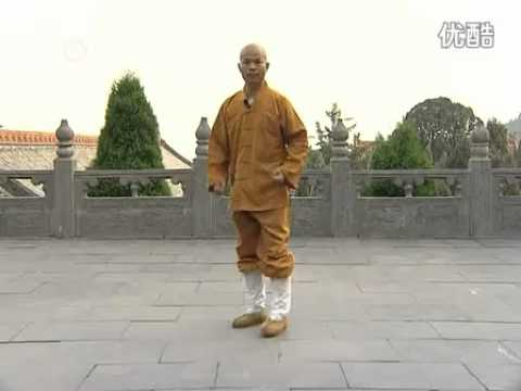 少林Shaolin Basic Kicks and footwork Image 1