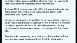 Biochemistry-Eukaryotic Gene Expression