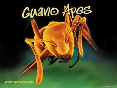 Guano Apes- Open Your Eyes W/lyrics