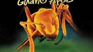 Watch Guano Apes Open Your Eyes video