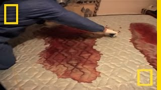 Crime Scene Cleaners | Real Life CSI