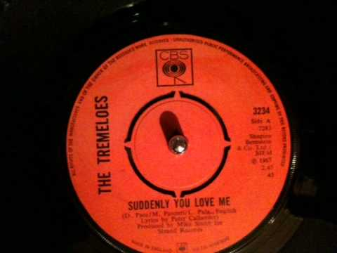 Tremeloes - suddenly you love me