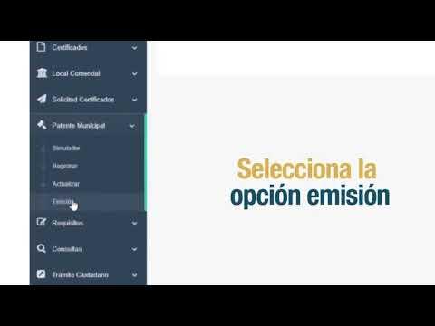 Portal en línea - Patente para contribuyente no obligados a llevar contabilidad