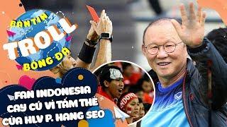 Bản Tin Troll Bóng Đá 12/2: Fan Indo cay cú vì tấm thẻ của HLV Park Hang Seo