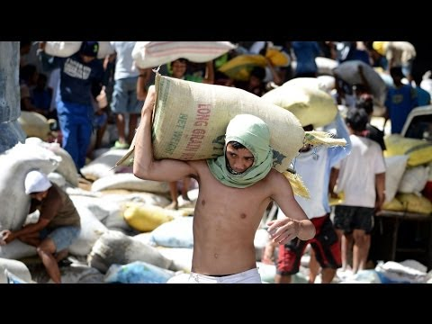 Eight crushed to death in typhoon-hit Philippines as survivors loot rice warehouse