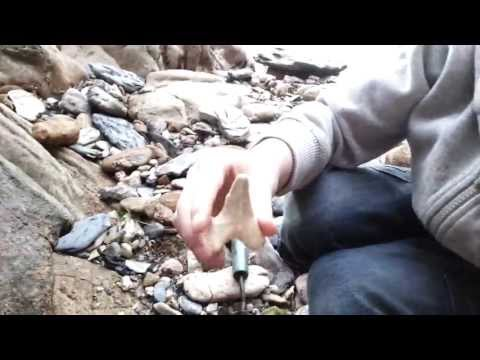 HBJA1 - Fossil and Shark Tooth Hunting, Devon, England, UK. Digger Man Harry and Digger Jack