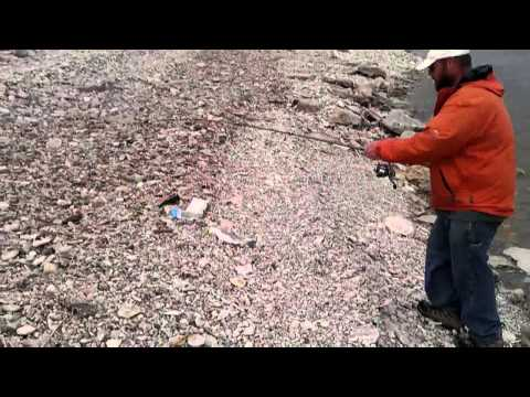 White Bass May 1 Fishing Marion Reservoir Kansas