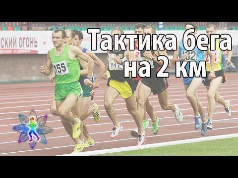 Тактика бега на 2 км. Как разложить силы в беге на 2 км.