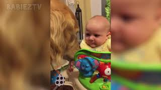 13 Adorable Babies Playing With Dogs and Cats   Funny Babies Compilation 2018   YouTube