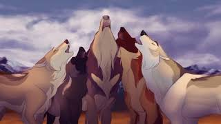Anime Wolves Listen To Your Heart :3