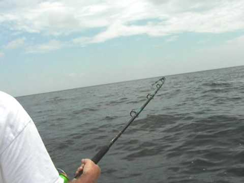 fishing dauphin island