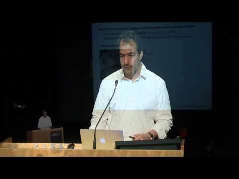 Alan Jasanoff: Molecular Probes for Noninvasive Neuroimaging
