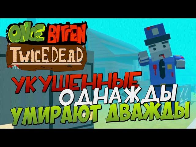 Руководство запуска: Once Bitten Twice Dead по сети