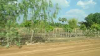 Road from Siem Reap to Phnom Penh (暹粒至金邊沿路風景) Part 1