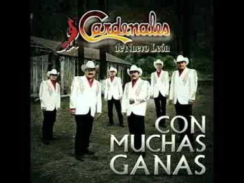 Cardenales de Nuevo León - La Chica Está Enojada